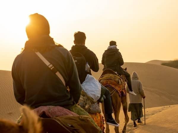 camel safari view